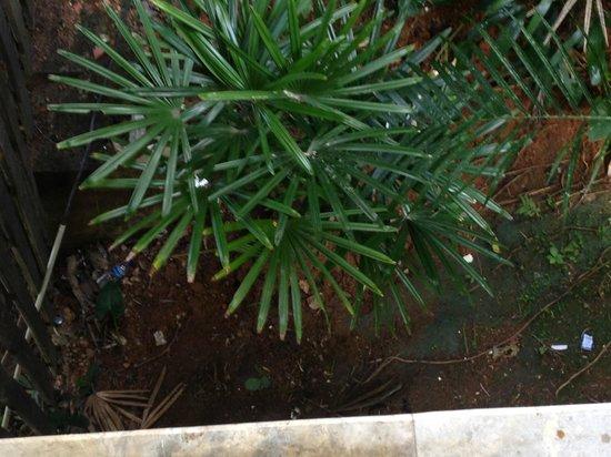 Banyan Tree Bintan: Trash Everywhere