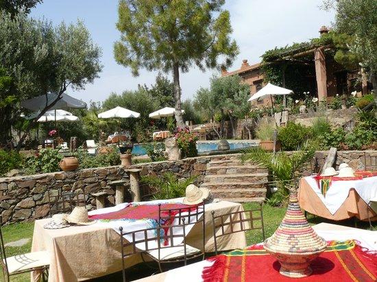 Chez Momo II : Garten