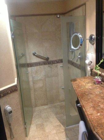 Crowne Plaza Hotel de Mexico: La temp. agua varía mucho.