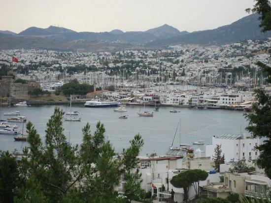 Hotel Manastir: Balcony view6