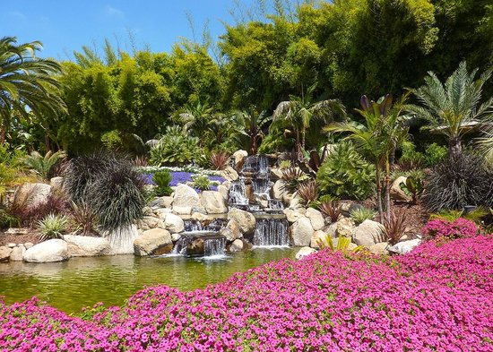 Grand Tradition Estate and Gardens: Compass garden - a riot of colour and shape