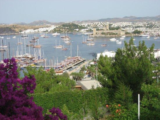 Hotel Manastir: Balcony view8