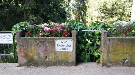 Botanischer Garten: Acceso