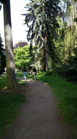Botanischer Garten: Ingresando