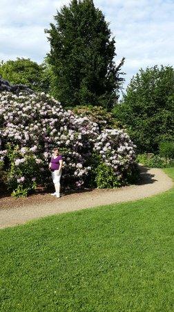 Botanischer Garten: Belleza de colores