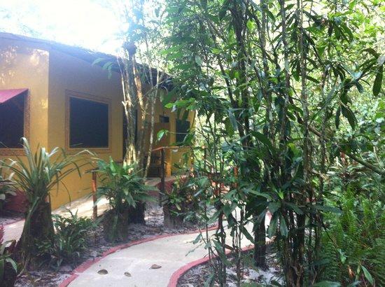 Amazon Ecopark Jungle Lodge: Amazon Eco Park