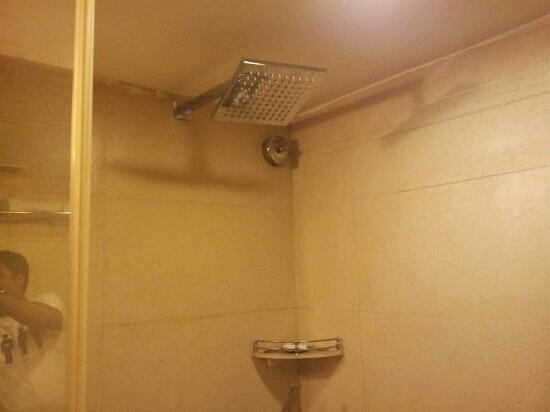Quality Inn Bez Krishnaa: Rain Shower