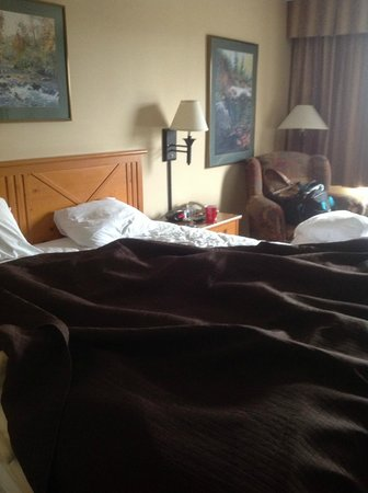 Best Western Plus Holland Inn & Suites: King Bed