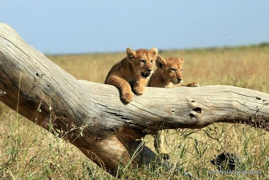 East Africa Adventure Tours and Safaris - Day Tours: 4