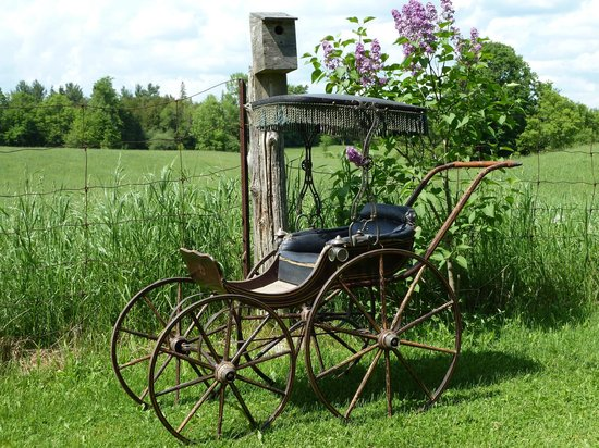 """Horseless Carriage Museum : 1870""""s Victorian Baby Carriage"""