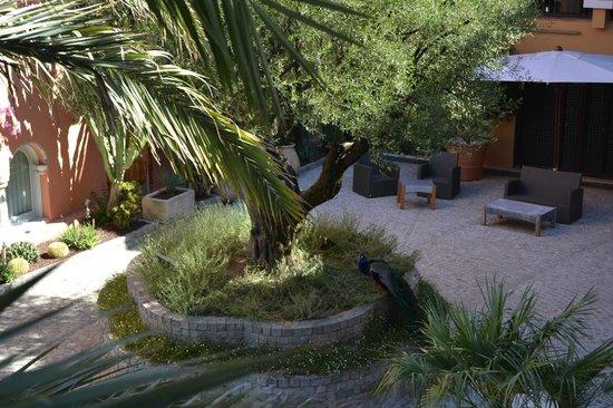 Hotel Byblos Saint Tropez: Peacock