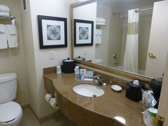 Hampton Inn & Suites Toronto Airport: Bathroom