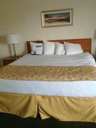Baymont Inn & Suites Mackinaw City : Comfortable king size bed