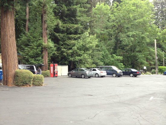 Quality Inn & Suites Santa Cruz Mountains: Parking area