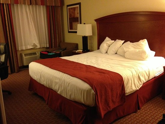 Quality Inn & Suites Santa Cruz Mountains: King room