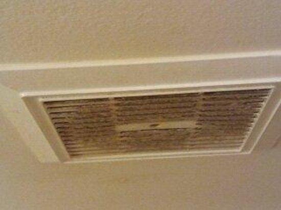 9 Arizona Motor Hotel: Mmm...mold