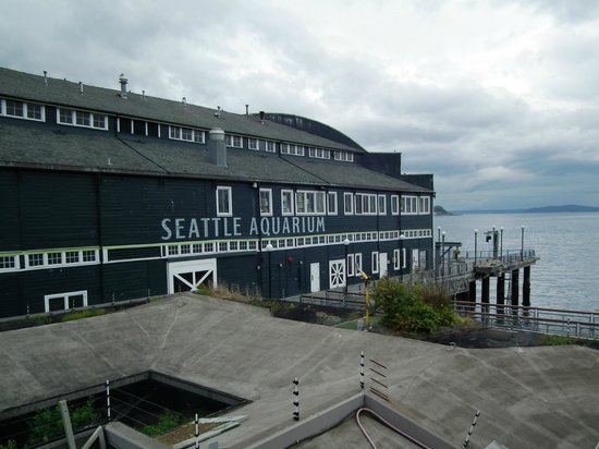 A View From The Outside Picture Of Seattle Aquarium