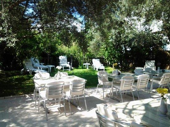 Hotel Oliva: Garden Dinning Area