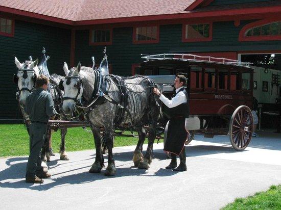 Mackinac Island Carriage Tours Tripadvisor