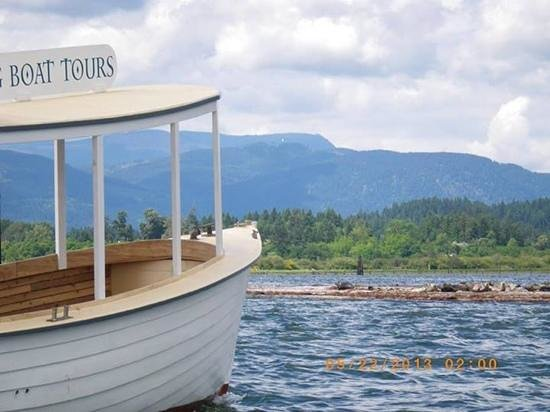 Greylag Boat Tours - Private Sails: in cowichan bay