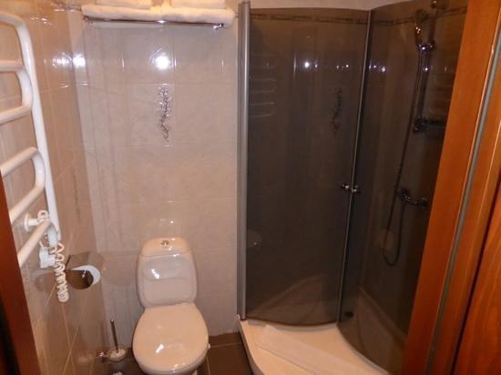 Nevsky Contour Hotel: 303 Water Closet