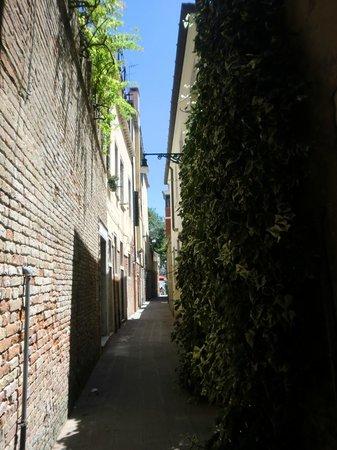 Acca Hotel : Street