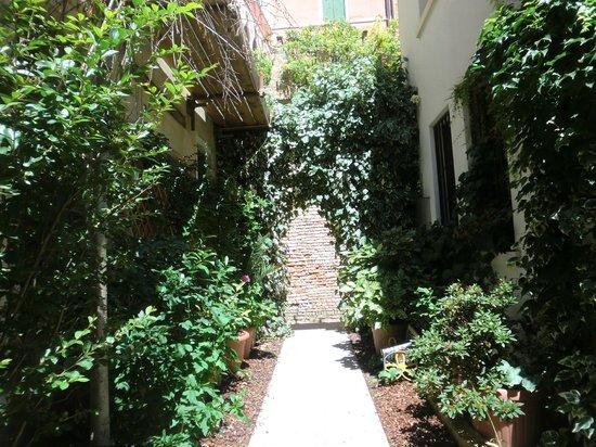 Acca Hotel : Garden