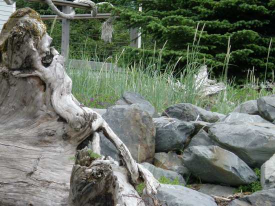 Seek and find...driftwood woman on the beach.
