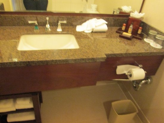New York LaGuardia Airport Marriott: Bathroom