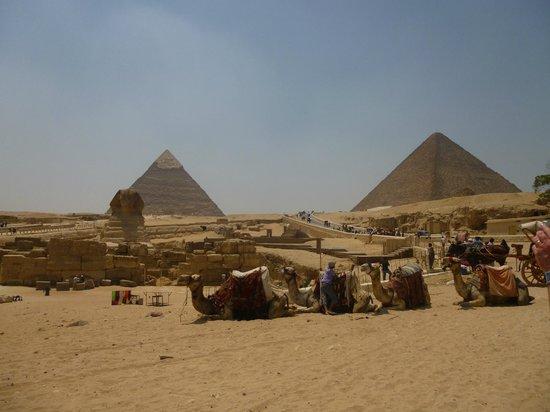 Ramasside Tours - Day Tours: Pyramids of Giza
