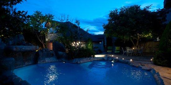 Lakeshore House: Backyard Pool and waterfall