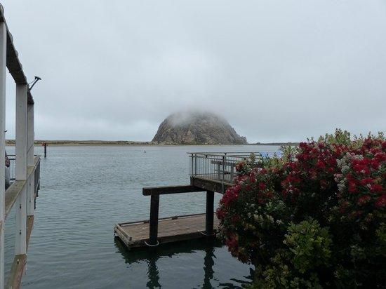 Anderson Inn: Vista de Morro Bay