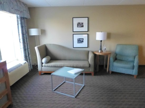 Hampton Inn & Suites St. Louis at Forest Park: Sofa bed