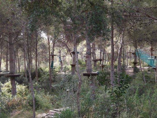 some high - Picture of Jungle Parc, Santa Ponsa - TripAdvisor