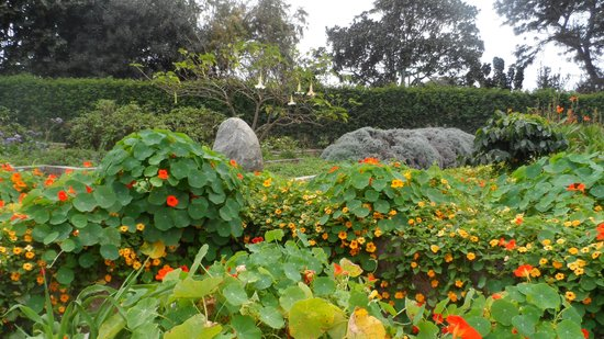 Jardin de Los Sentidos
