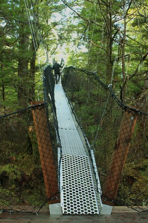 Metlakatla Wilderness Trail: Going up the canopy walkway to the viewing tower