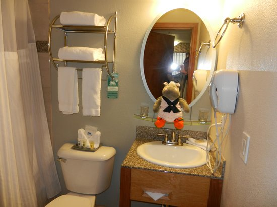 Shilo Inn Rose Garden: The Bathroom