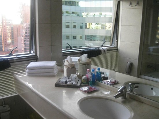 Hotel Plaza El Bosque Ebro: Suite Executiva
