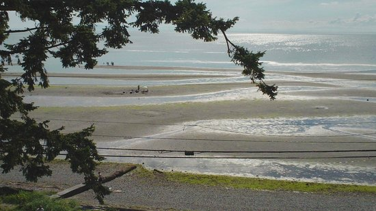 Sandcastle at Birch Bay: View of Birch Bay from Roof Top