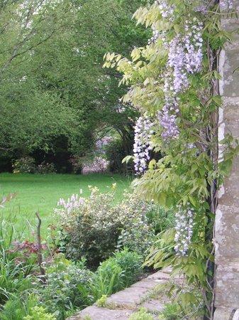 Field Green Oast Bed & Breakfast: Garden