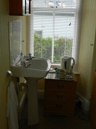 The Borthalan Hotel: The 'en-suite' sink arrangement. Not quite in the 'bathroom'.