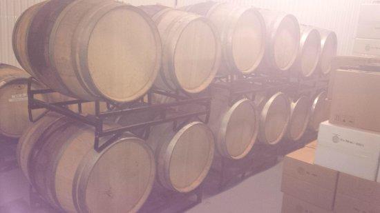 La Route des Vins: Vignoble Gagliano