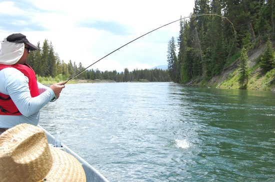 Dave Hansen Whitewater and Scenic River Trips: Bringing in the trout