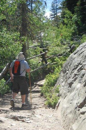 Jenny Lake Boating: Hiking up to Inspiration Point