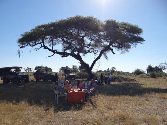 Great Plains Conservation Duba Plains Camp: lunch