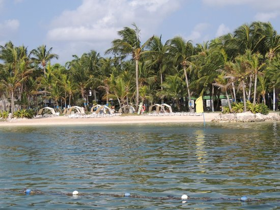 Decameron Marazul: Playa del hotel