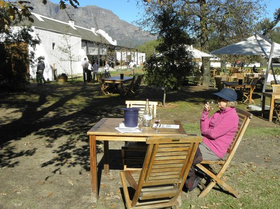 Solms-Delta Farm Tours: Much more than a wine estate!