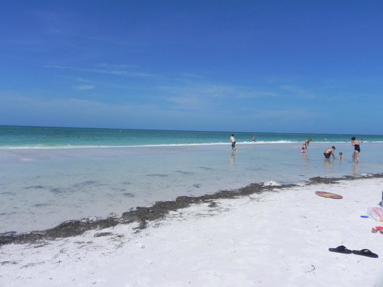 Lido Beach: lido key beach