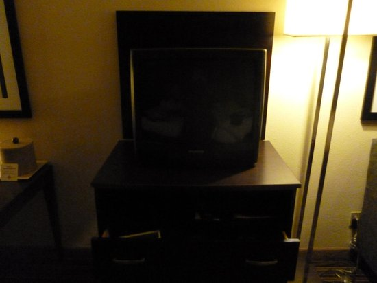 Wyndham Garden Norfolk Downtown: TV/Chest of Drawers