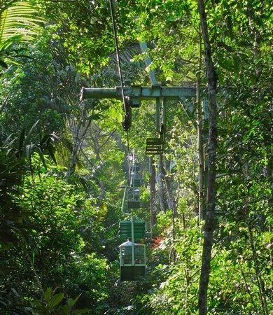 Gamboa Rainforest Resort Aerial Tram Tour: Trams ride cages